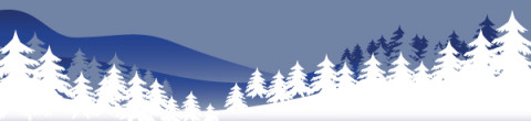 Winter Graphic Banner
