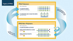 EBC Annual Emerging Contaminants Seminar: PFAS - The Forever Chemical - Morning Session @ VIRTUAL MEETING