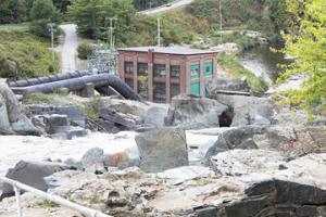 Dam Management Committee
