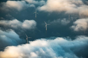 Offshore Wind Working Group